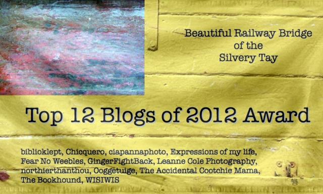 2012 Blog Award Flag 1600